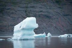 Ajardine com banquisas de gelo no lago glacial Fjallsarlon, Icelan Foto de Stock