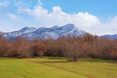 Ajardine com céu azul, as montanhas nevado e a pastagem verde Bósnia e Herzegovina Imagem de Stock