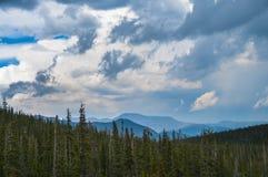 Ajardine com céu azul e árvores em Colorado Fotografia de Stock Royalty Free