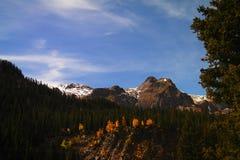 Ajardine com céu azul e árvores em Colorado Imagens de Stock Royalty Free