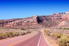 Ajardine com céu azul e árvores em Colorado Imagem de Stock Royalty Free