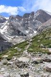 Ajardine com céu azul e árvores em Colorado Imagem de Stock