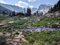 Ajardine com céu azul e árvores em Colorado Fotos de Stock