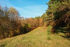 Ajardine com céu azul e madeira do outono com árvores e escove em cima do monte da pastagem Fotos de Stock Royalty Free