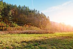 Ajardine com céu azul e madeira do outono com árvores e escove em cima do monte da pastagem Foto de Stock