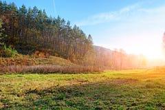 Ajardine com céu azul e madeira do outono com árvores e escove em cima do monte da pastagem Fotografia de Stock Royalty Free