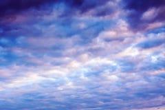 Ajardine com céu e nuvens no nascer do sol, por do sol Fotografia de Stock
