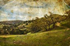 Ajardine com céu nebuloso, montes verdes, estrada de terra Imagens de Stock