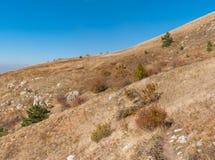 Ajardine com caminhada do trajeto em um pasto Demerdzhi da montanha, península crimeana Imagens de Stock