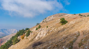 Ajardine com caminhada do trajeto em um pasto Demerdzhi da montanha, península crimeana Foto de Stock