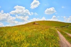 Ajardine com campo das flores, da casa de campo e da estrada secundária. Fotografia de Stock