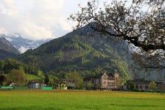 Ajardine com campo e a montanha alta verdes em Interlaken, Swit Fotos de Stock