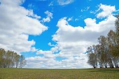 Ajardine com campo largo e o céu nebuloso ensolarado na mola Imagens de Stock Royalty Free