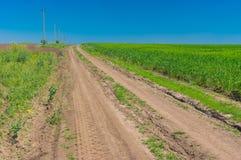 Ajardine com campos agrícolas de uma estrada de terra em Ucrânia central Fotos de Stock Royalty Free