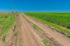 Ajardine com campos agrícolas de uma estrada de terra em Ucrânia central Foto de Stock