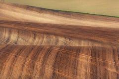Ajardine com campos listrados de Moravia sul no por do sol Backgound Imagens de Stock