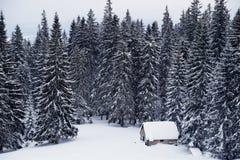 Ajardine com casa coberto de neve em um esclarecimento nas madeiras Fotografia de Stock