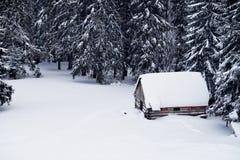 Ajardine com casa coberto de neve em um esclarecimento nas madeiras Fotos de Stock