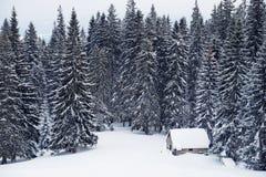 Ajardine com casa coberto de neve em um esclarecimento nas madeiras Imagens de Stock