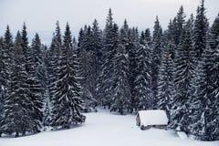Ajardine com casa coberto de neve em um esclarecimento nas madeiras Imagens de Stock Royalty Free