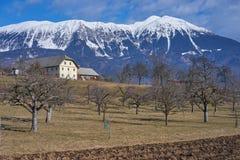 Ajardine com casa da quinta e prado com árvores, Gorenjska - Eslovênia Fotos de Stock
