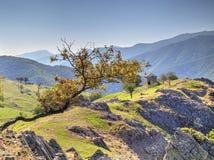 Ajardine com a casa de pedra velha na montanha Foto de Stock