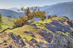 Ajardine com a casa de pedra velha na montanha Fotografia de Stock