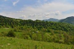 Ajardine com casa, montanhas, floresta e prado Fotografia de Stock Royalty Free