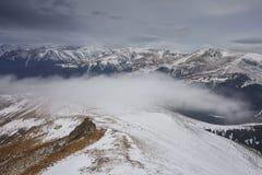 Ajardine com a cobertura da névoa na montanha Imagem de Stock