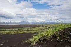 Ajardine com dunas de areia e grama verde, Islândia Imagem de Stock Royalty Free