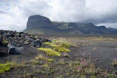 Ajardine com dunas e a montanha coloridas de Lomagnupur, Islândia Fotos de Stock Royalty Free