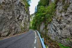 Ajardine com a estrada através do desfiladeiro em montanhas de Piatra Craiului, Romênia de Dâmbovicioarei Imagem de Stock