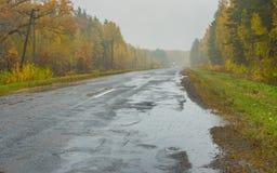 Ajardine com estrada, chuva e névoa em Ucrânia Fotografia de Stock