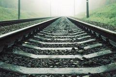 Ajardine com a estrada de ferro na floresta na névoa Fotografia de Stock