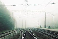 Ajardine com a estrada de ferro na floresta na névoa fotos de stock