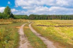 Ajardine com a estrada de terra à floresta no fim do verão Fotos de Stock Royalty Free