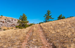 Ajardine com a estrada de terra na reserva natural de Babuhan Yaila em Crimeia Foto de Stock