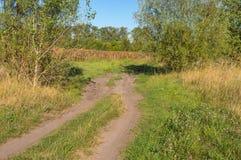 Ajardine com a estrada de terra perto dos campos do girassol em Ucrânia central Imagens de Stock Royalty Free