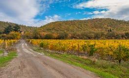 Ajardine com a estrada de terra que conduz ao pagamento remoto perto da cidade no outono, península crimeana de Alushta Fotos de Stock Royalty Free