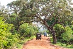 Ajardine com estrada e SUVs no parque nacional de Yala Fotos de Stock Royalty Free
