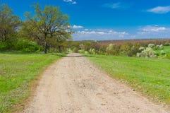 Ajardine com a estrada macadamized na área rural, Ucrânia central Imagem de Stock