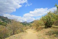 Ajardine com a estrada na reserva natural nacional Karadag Imagens de Stock Royalty Free