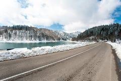 Ajardine com a estrada no lago Shaori da floresta do inverno, Racha georgi Imagens de Stock Royalty Free