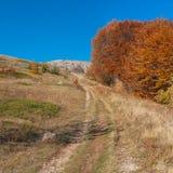Ajardine com a estrada rochosa que conduz à reserva natural de Babuhan Yaila na península crimeana Fotos de Stock Royalty Free