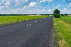 Ajardine com a estrada rural do asfalto em Ucrânia central Imagens de Stock Royalty Free