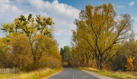 Ajardine com a estrada rural no oblast de Sumskaya, Ucrânia Fotografia de Stock Royalty Free