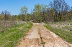 Ajardine com a estrada suja da argila na área ucraniana rural Fotos de Stock