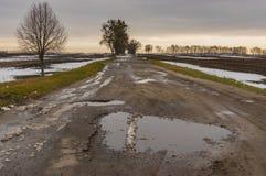 Ajardine com a estrada vazia remota no outono atrasado Foto de Stock Royalty Free