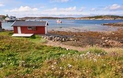 Ajardine com fiorde, barcos e clareira com azaléia de florescência Imagem de Stock
