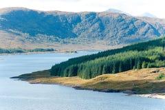 Ajardine com a floresta, as montanhas e la escoceses verdes bonitos Imagem de Stock Royalty Free